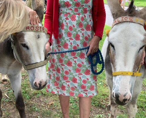 2021 Rosie and Alice the Donkeys
