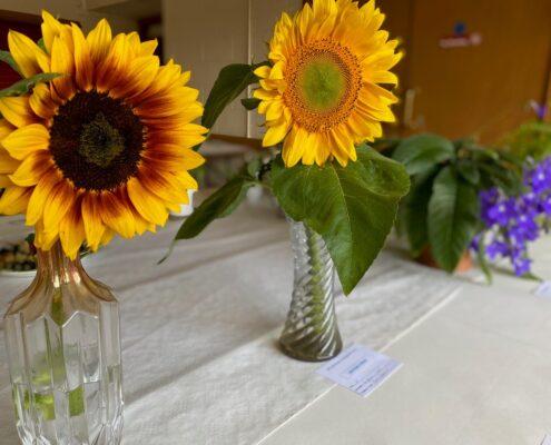 2021 sunflower